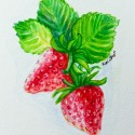 Very berry watercolor series